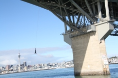 Another mad person jumps off the Harbour Bridge.