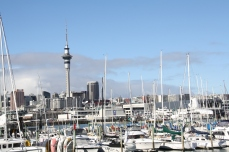 Boats everywhere. Auckland earns it's nickname as the City of Sails.