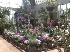The 'cool' house in the Wintergarden
