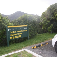 One of the many stops for photographs on Queen Charlotte Drive